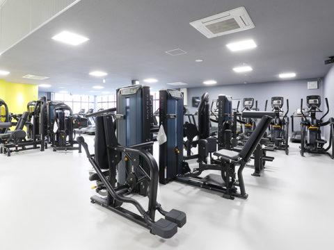 筋肉トーレニング